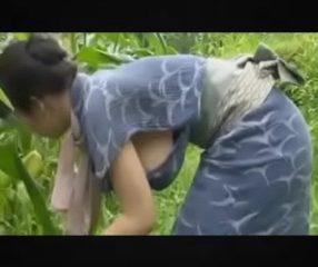 Asian MILFแม่บ้านสาวโดนเย็ดในไร่ข้าวโพดกลางวันแสกๆ